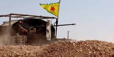 Reqqayı Özgürleştirme Hamlesinin 8 günlük bilançosu açıklandı